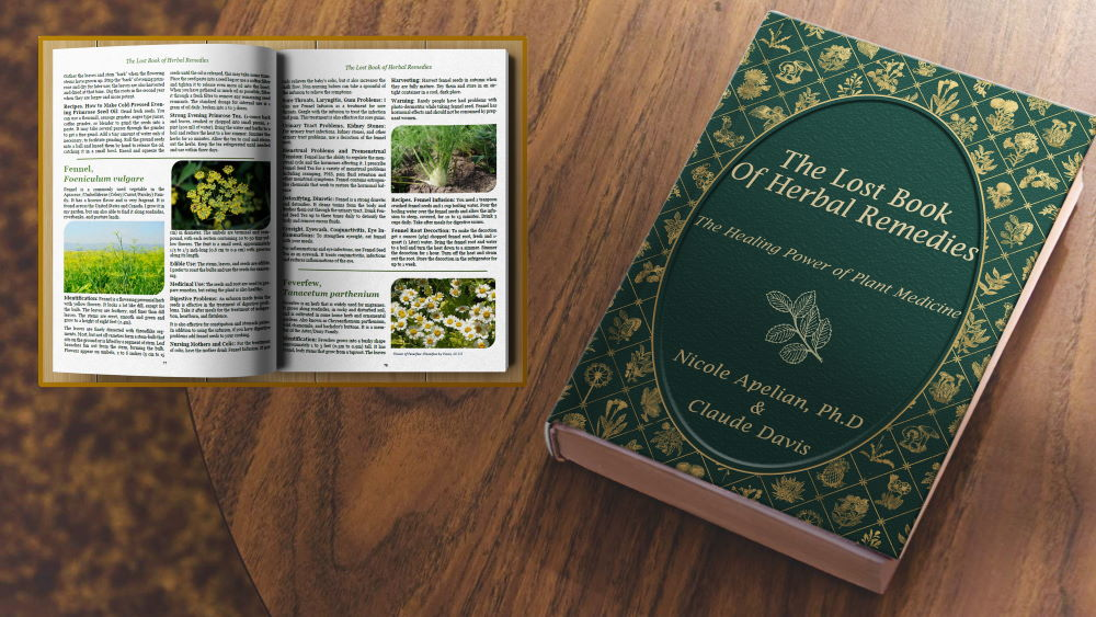 The Lost Book of Herbal Medicine
